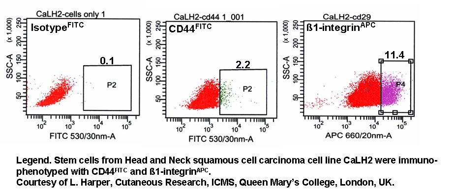 Stem cell/progenitor cells and Rare event analysis - Flow Cytometry ...